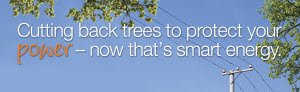 Click to access Tree Care page