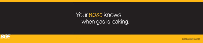 BGE Gas Safety Campaign web banner