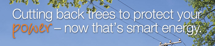 BGE Tree Care Advertising Campaign web banner